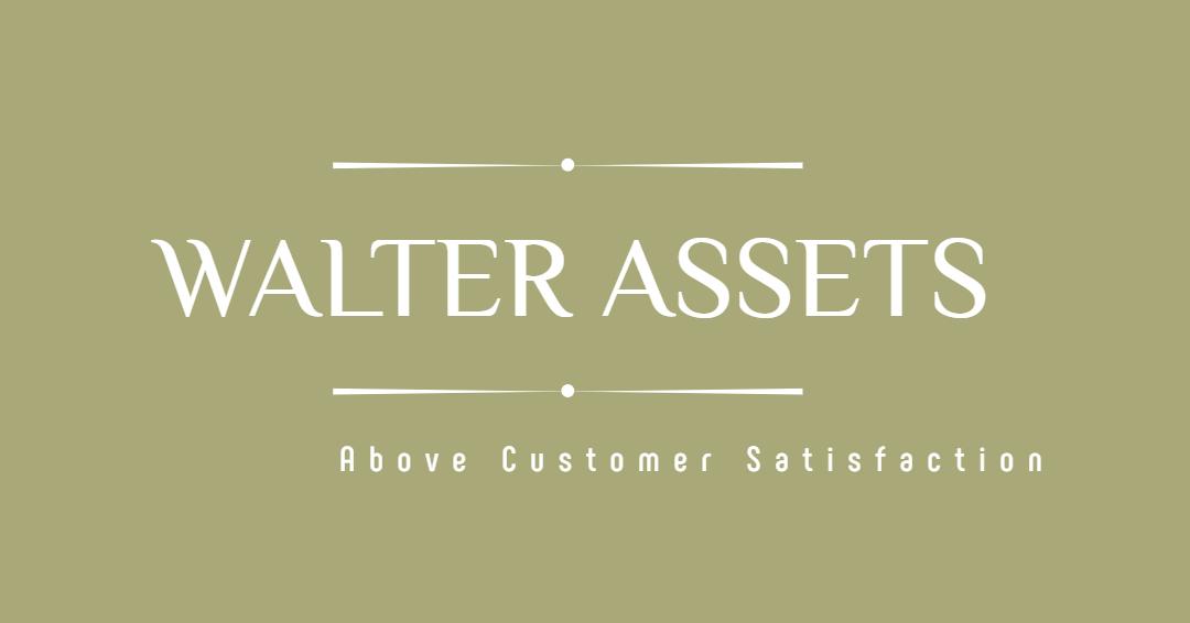 WALTER ASSETS